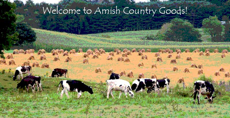 Amish-Country-Goods-posterized