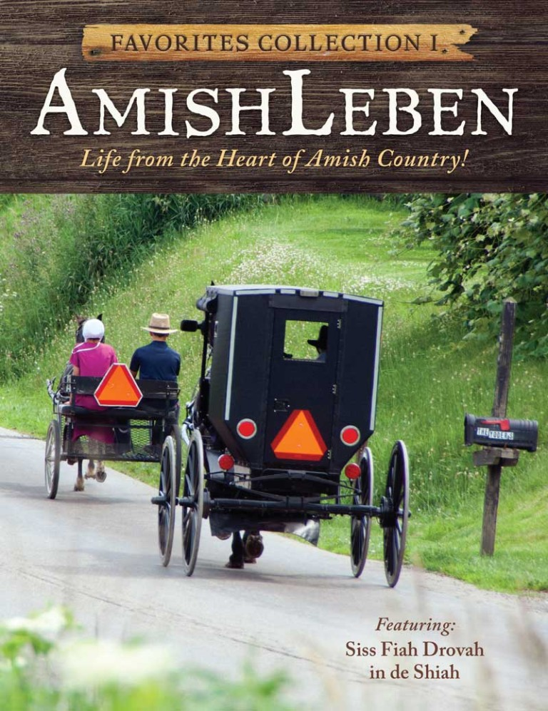 Amish Leben Favorites Front Cover